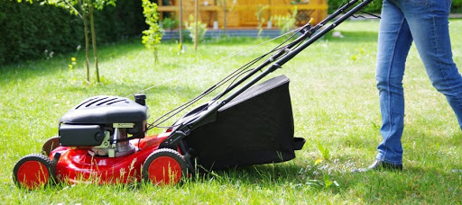 first lawn mower